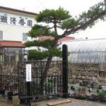廣瀬清香園