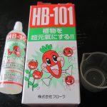 弱ってる盆栽へのHB-101の効果はどうなってる?